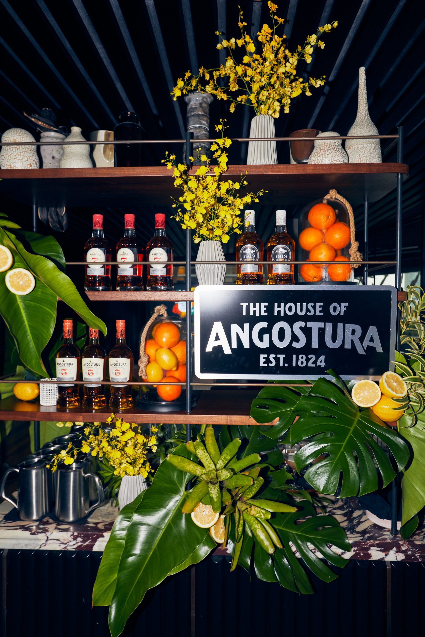 The House of Angostura